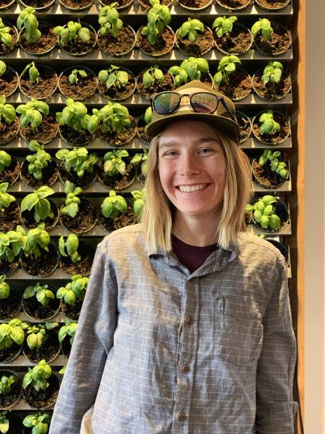 Mariah Foley with a wall of basil. Foley is the lead of the vegetable growing staff at Rock Bottom Ranch this season.