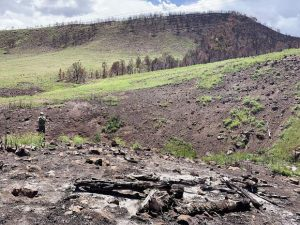 Basalt project designed to heal community and Lake Christine Fire burn scar