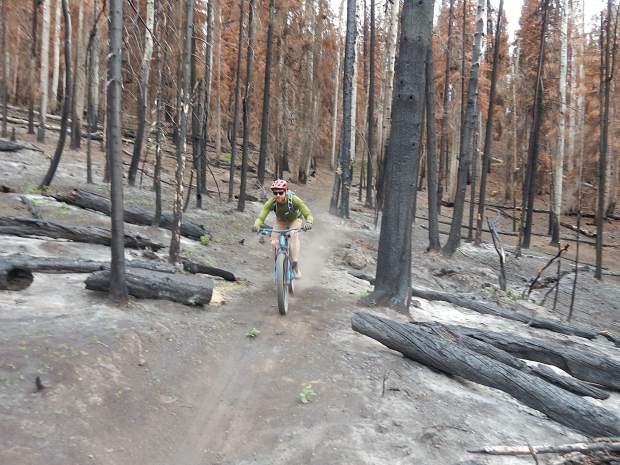 Zach Nichols zips down the Mill Creek Trail on June 14 on Basalt Mountain. The trail has everything from apocalyptic stretches to unsinged meadows after being in the middle of the Lake Christine Fire last summer.