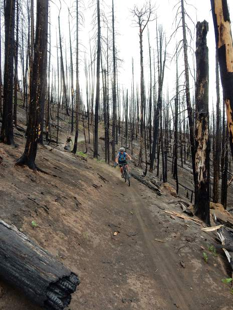 Cyclists Bob Ward (front) and Zach Nichols charge down the Mill Creek Trail on Basalt Mountain Friday evening. A U.S. Forest Service trail crew cleared the deadfall on the trail, which is in the Lake Christine Fire burn scar.