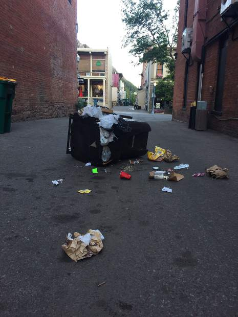 Two unlocked trash cans in the alley off of Galena Street were broken into one morning in June.