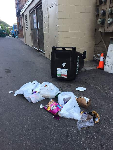 A bear got into an unsecured trash can located in an alley between Hyman Avenue and Cooper Street in the early morning hours in late June.