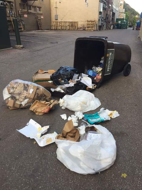 The trash can in the alley between the Cooper and Hyman avenue malls off of Galena Street is routinely knocked over and broken into by bears in the early morning hours.