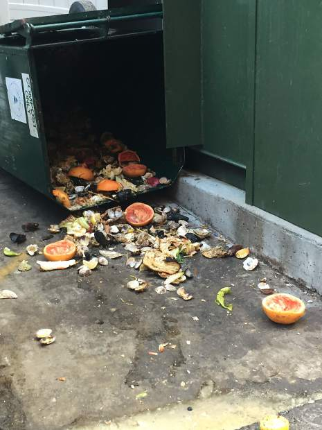 Food scraps lie in the alley behind Clark's Oyster Bar on an early June morning. The restaurant received a warning for not adequately locking its compost container.
