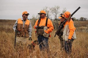 Colorado Parks and Wildlife Commission expands public hunting access by 100,000 acres