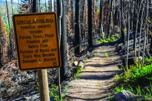 Trails reopen: Recreation returning to Basalt Mountain this summer after Lake Christine Fire
