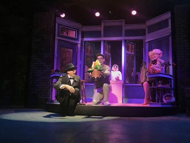 "Theatre Aspen's ""Little Shop of Horrors"" will run from July 11 through Aug. 17 in the Hurst Theatre."