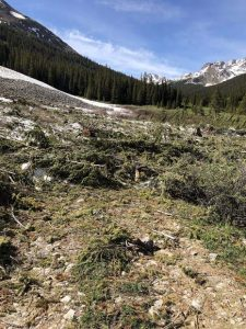 Avalanche debris keeps upper Lincoln Creek Road closed to vehicles