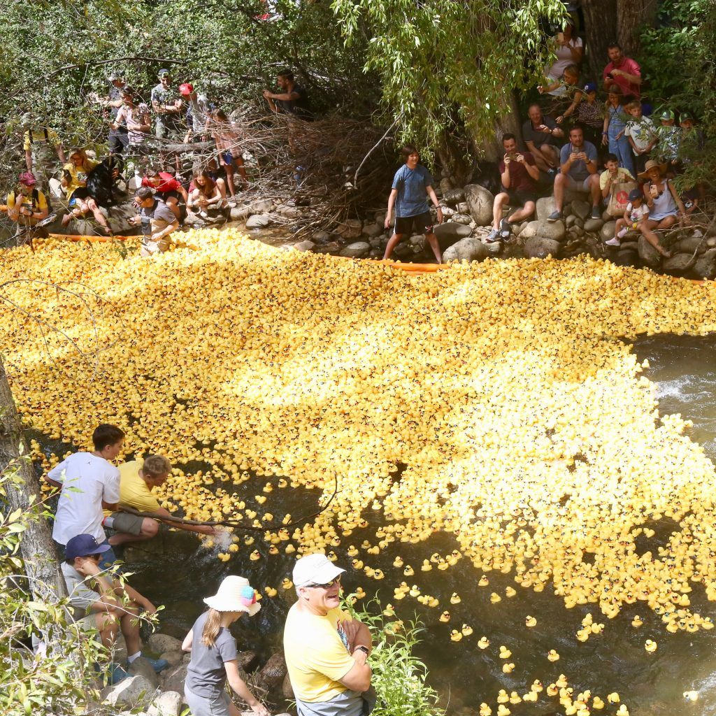 People gathered near Herron Park on Saturday as 20,000 rubber ducks were dropped into the Roaring Fork River for the 28th annual Rotary Club of Aspen's Ducky Derby.