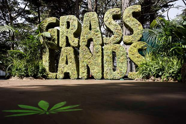Outside Lands in San Francisco, held August 9-11 in San Francisco became the first-ever, major music festival to allow cannabis consumption and sales on-site.