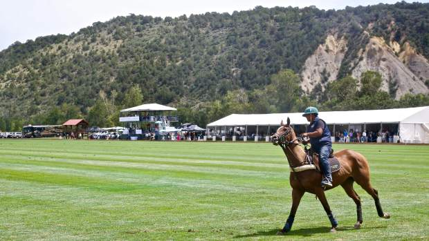 A horse is allowed a few warm-up laps during the Aspen Valley Polo Club's Chukkers, Champagne & Caviar fundraiser for the Aspen Valley Hospital Foundation on Sunday, Aug. 11, 2019, at McClure River Ranch near Carbondale. (Photo by Austin Colbert/The Aspen Times)