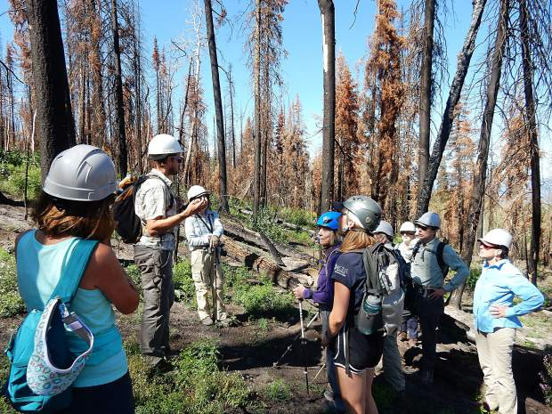 Adam McCurdy, second from left, the forest programs director for Aspen Center for Environental Studies, discusses fire ecology with a group touring Basalt Mountain on Aug. 14.