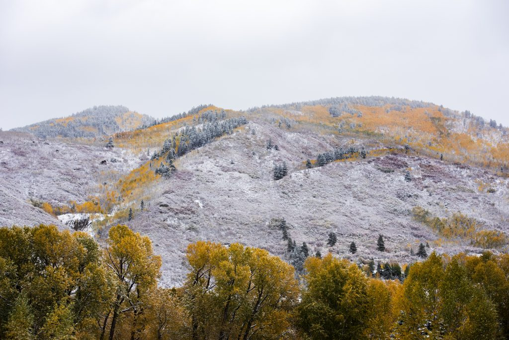 Snow blankets the view from Rio Grande Park on the Aspen trees on Thursday, October 10, 2019. (Kelsey Brunner/The Aspen Times)