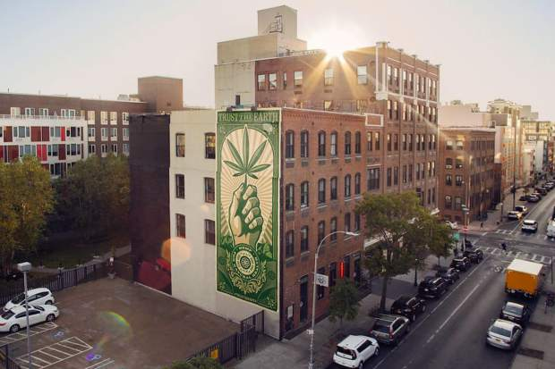 The first Trust The Earth mural was unveiled in Williamsburg, Brooklyn earlier this month.