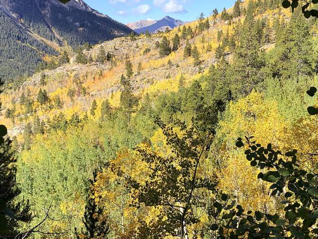 Color explodes from this view to the southwest from a trail near Twin Lakes.