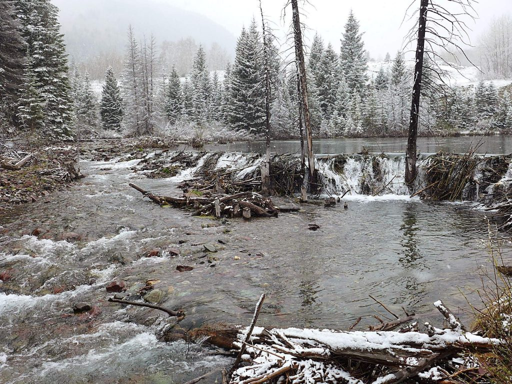 The site on Maroon Creek where the city of Aspen had proposed building a dam and reservoir on a snowy day in spring 2019. The city has hired an engineering firm to help figure out where to move its conditional water-storage rights after a water court judge in June ruled out the possibility of building dams or reservoirs on upper Maroon or Castle creeks.