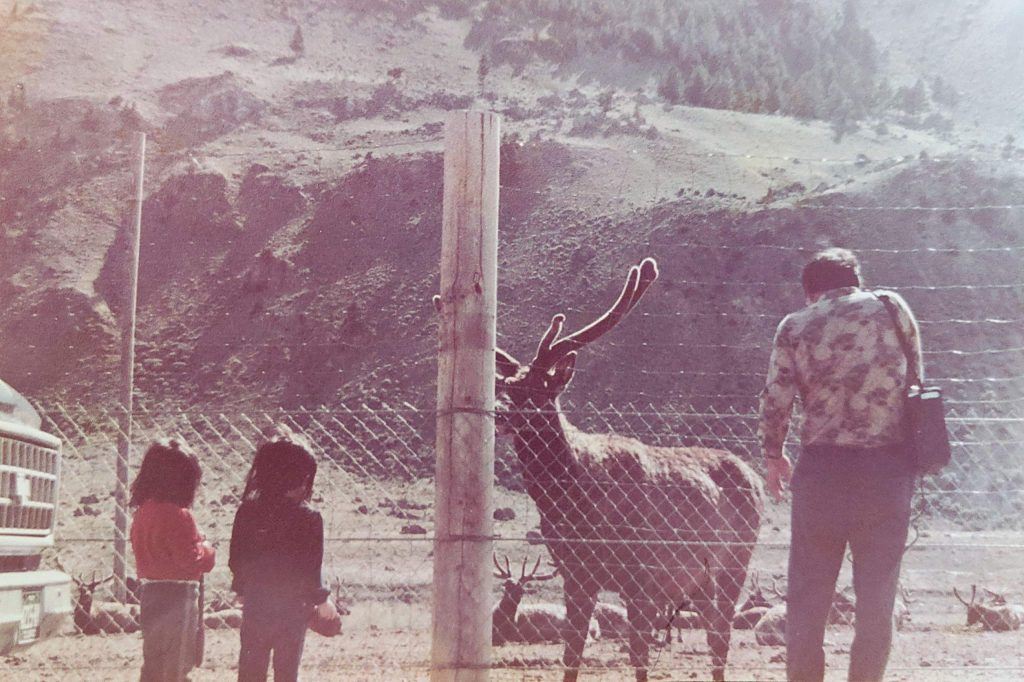 Susun Chung and Hanna Yi often tagged along with their father across Colorado for his elk antler side business.