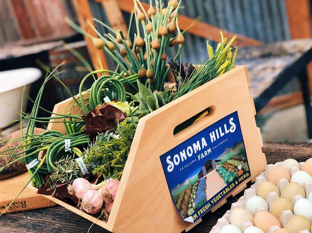 In addition to cannabis, Sonoma Hills Farm will maintain a culinary garden and fruit orchard.