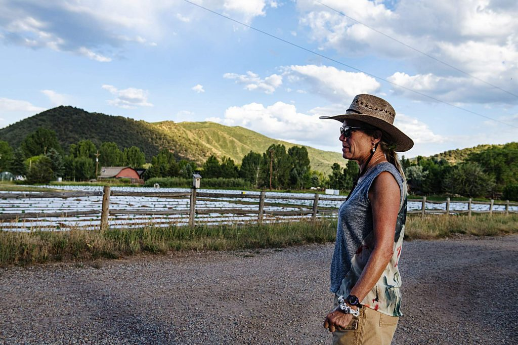 Cathy Markle stands on her property on Emma Road and looks at the hemp field recently planted on her neighbor's property on Monday, July 6, 2020.