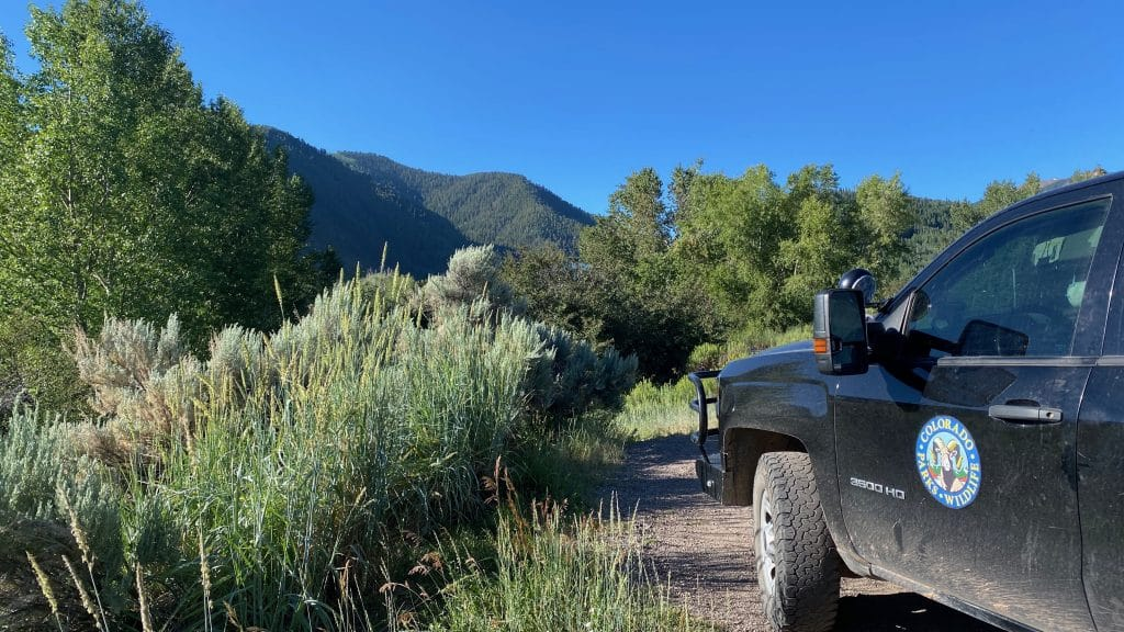 A Colorado Parks and Wildlife truck is parked at the base of Castle Creek Road on Friday morning. Wildlife officers are searching the area for a bear that broke into a home and attacked the homeowner early Friday morning.