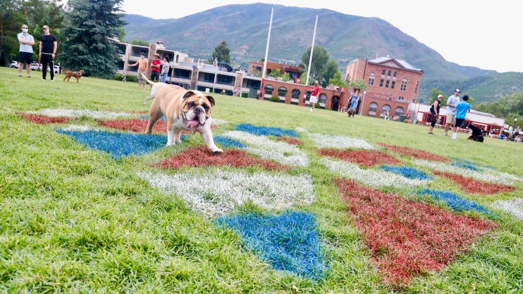 Dogs play at Wagner Park on Saturday, July 4, 2020, in downtown Aspen. This year's Fourth of July celebration was much quieter and without a parade due to the coronavirus pandemic. (Photo by Austin Colbert/The Aspen Times)