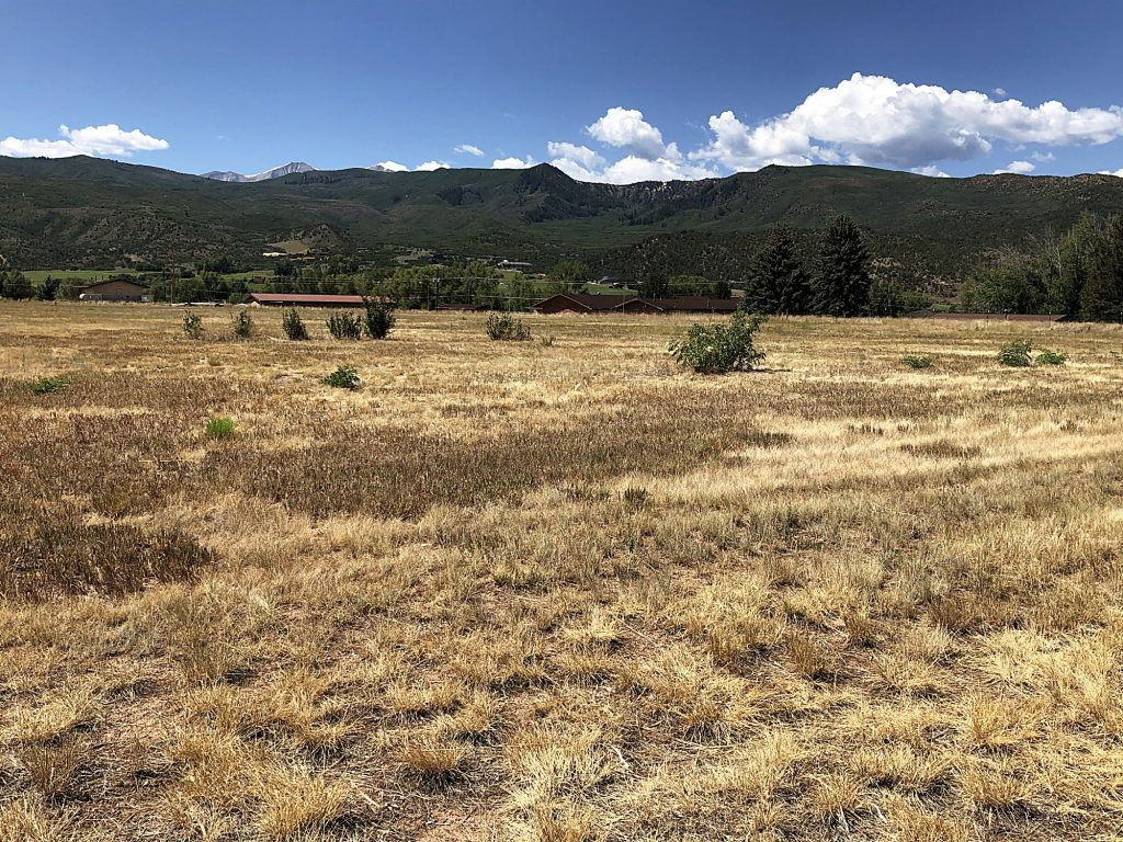 The U.S. Forest Service owns about nine acres of land adjacent to Crown Mountain Park in El Jebel. It is being eyed as a possible site for a privately funded sports complex.