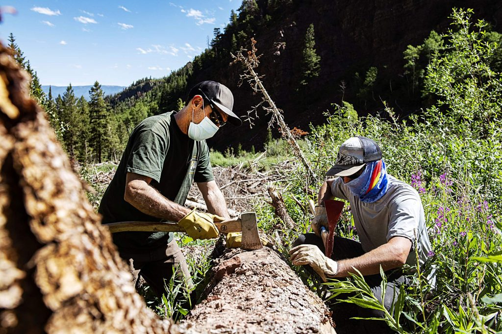 Brian Lazar, left, and Brandon Levy prepare to collect a sample from a tree up East Snowmass Trail for the Colorado Avalanche Information Center on Tuesday, July 7, 2020. (Kelsey Brunner/The Aspen Times)
