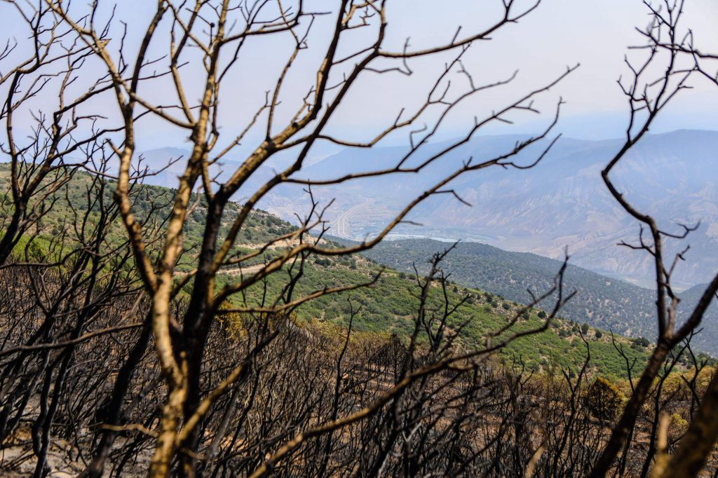 Charred trees from the Grizzly Creek Fire in the foreground and Interstate 70 in the background Friday near Dotsero.