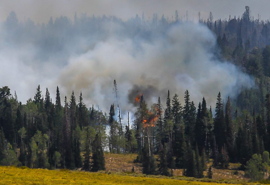Flames from the Grizzly Creek Fire pick up as the wind increases during afternoon hours Friday off Coffee Pot Road near Dotsero.