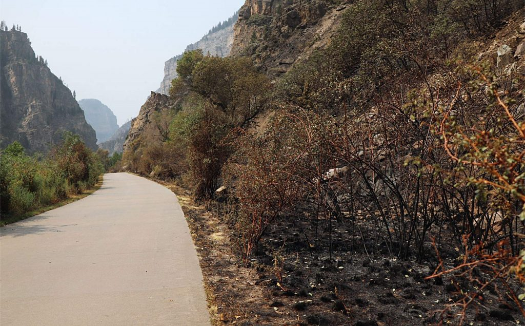 Scorched earth is seen adjacent to the path leading to the Hanging Lake Trailhead.