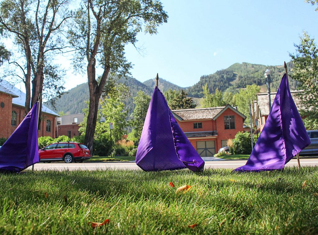 Purple flags meant to help raise overdose awareness stand in the grass outside of the Pitkin County Courthouse, Aug. 30, 2020. (Maddie Vincent/The Aspen Times)