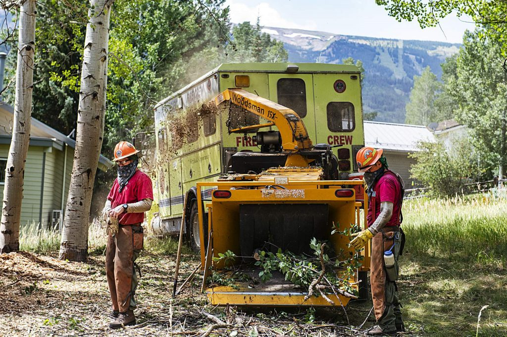 Crew members of the State Wildland Inmate Fire Team from the Rifle Correctional Center clear out dead trees and forest floor debris in Snowmass Village on Wednesday, August 5, 2020. (Kelsey Brunner/The Aspen Times)