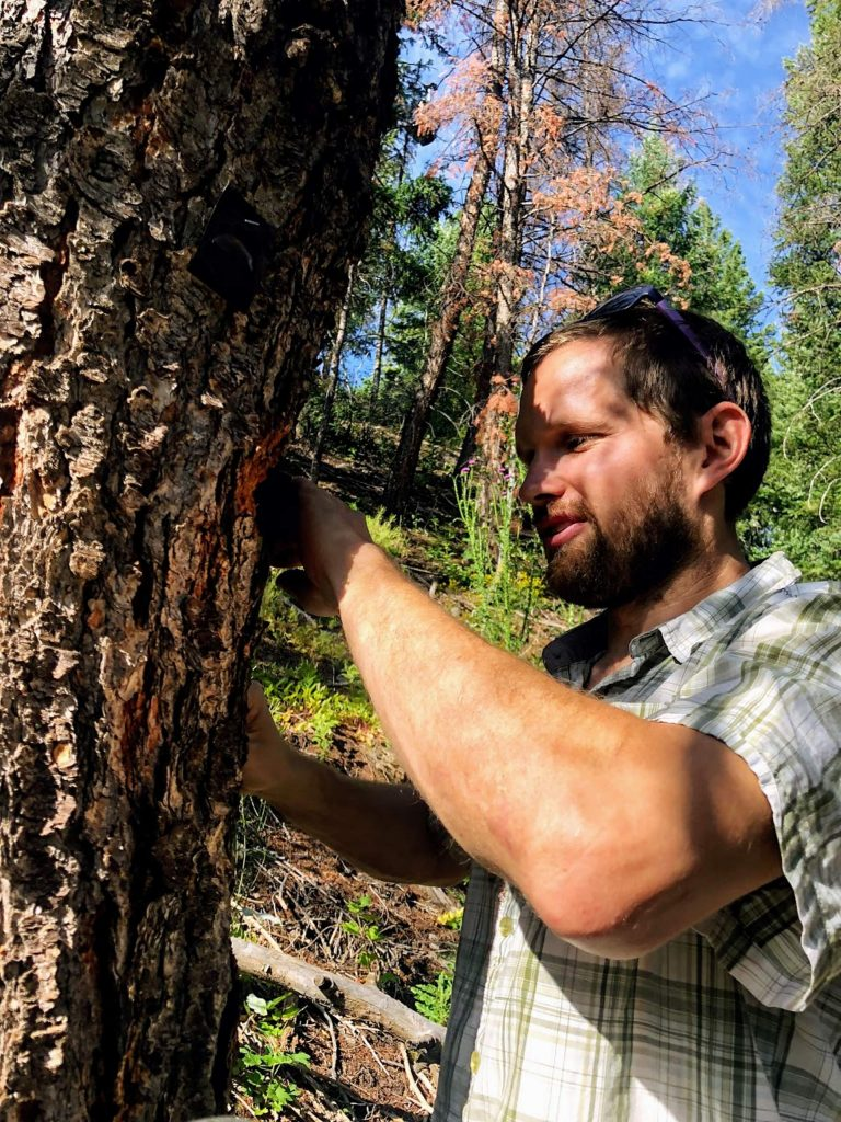 Adam McCurdy of the Aspen Center for Environmental Studies heads up work on the Forest Health Index, a tool that ranks varied indicators of forest health in Colorado's watersheds. One indicator, bear mortality, is rising rapidly in northwest Colorado and raises red flags.