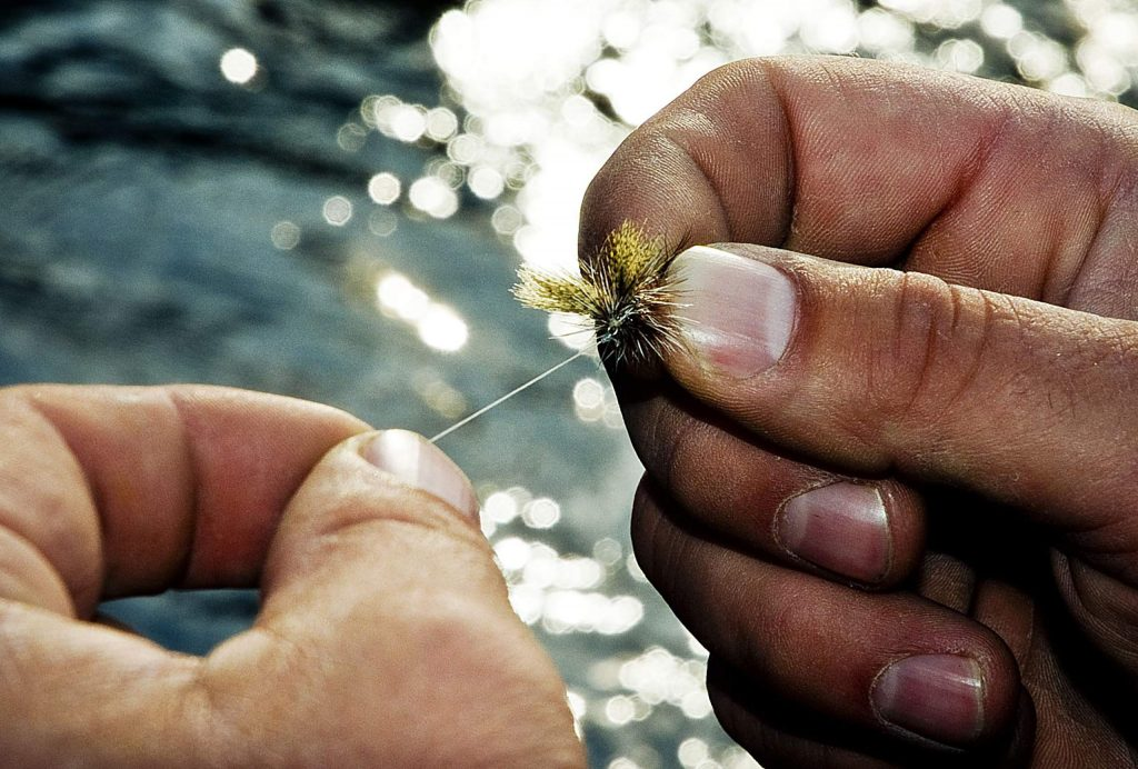 Tippet proportions and fly size