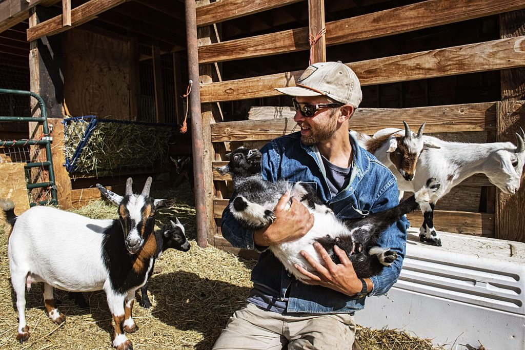 Hayden Kessel, land and livestock manager, holds one of the kids at the Farm Collaborative at Cozy Point Ranch on Wednesday, July 29, 2020. Kessel has been farming for ten years, but this is his first season at the Farm Collaborative. (Kelsey Brunner/The Aspen Times)