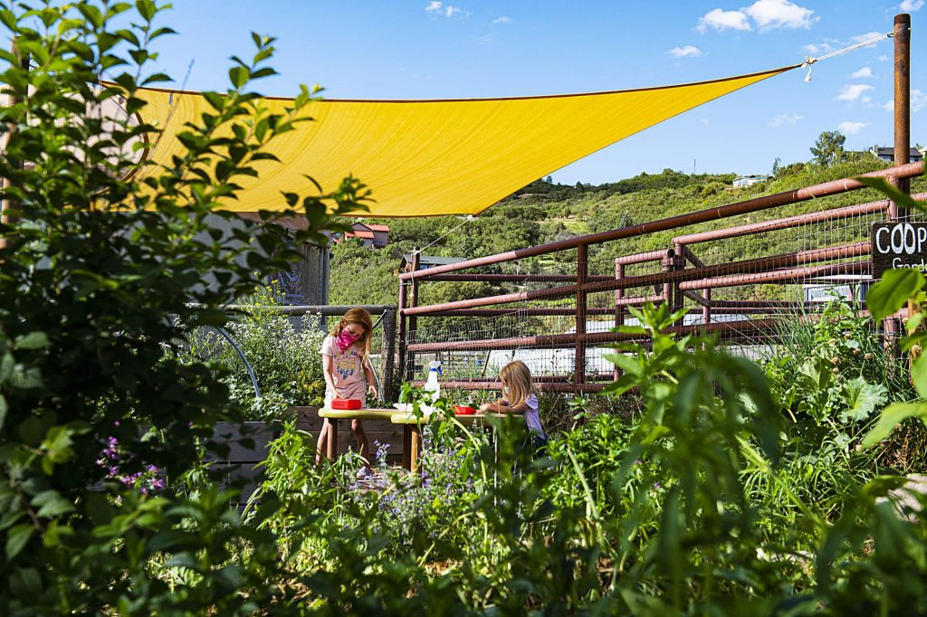 Two children play in co-op garden at the Farm Collaborative at Cozy Point Ranch in Aspen on Wednesday, July 29, 2020. (Kelsey Brunner/The Aspen Times)
