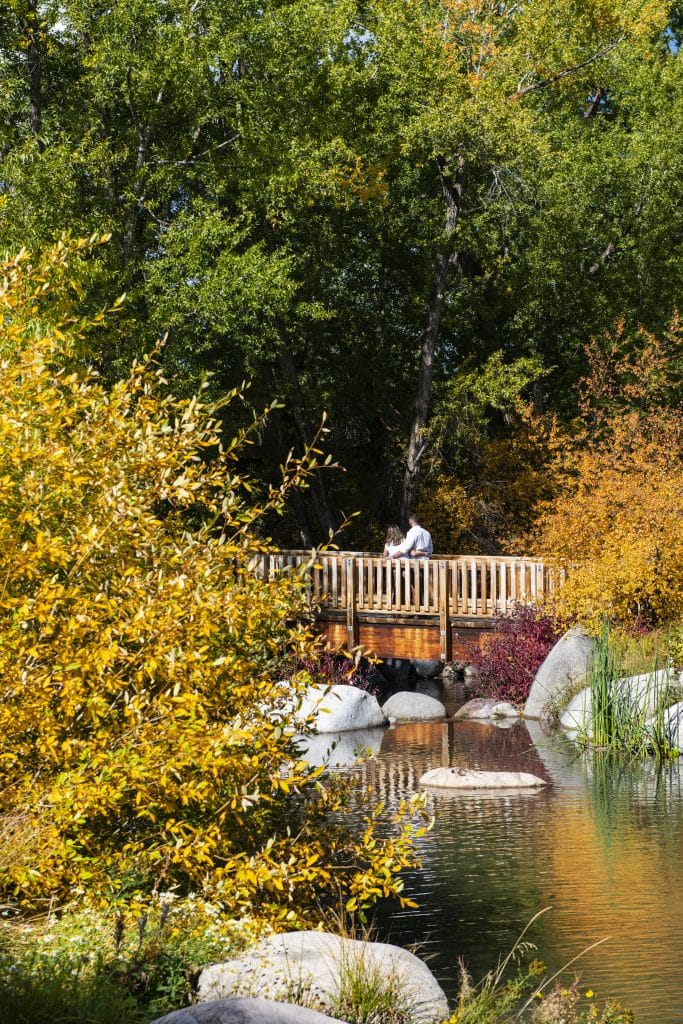 A couple embraces for a photo in the fall foliage on the bridge entering John Denver Sanctuary in Aspen on Monday, Sept. 21, 2020.