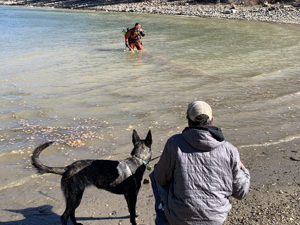 Chris Brindisi and his Dutch shepherd Cache watch a diver enter Dillon Reservoir on Oct. 14, 2020. The dogs get to interact with the divers in full gear and watch them enter the lake to build comfort before the rescue exercise.