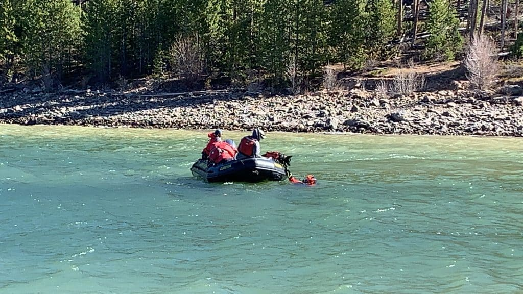 Chris Brindisi and his Dutch shepherd Cache successfully locate a diver during a training exercise at Dillon Reservoir on Oct. 14, 2020.
