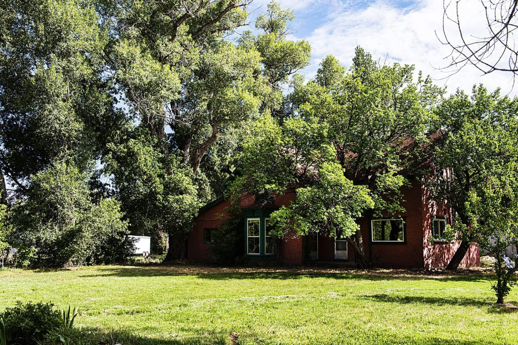Trees grow tall around the Glassier farmhouse in Emma on Thursday, August 6, 2020.
