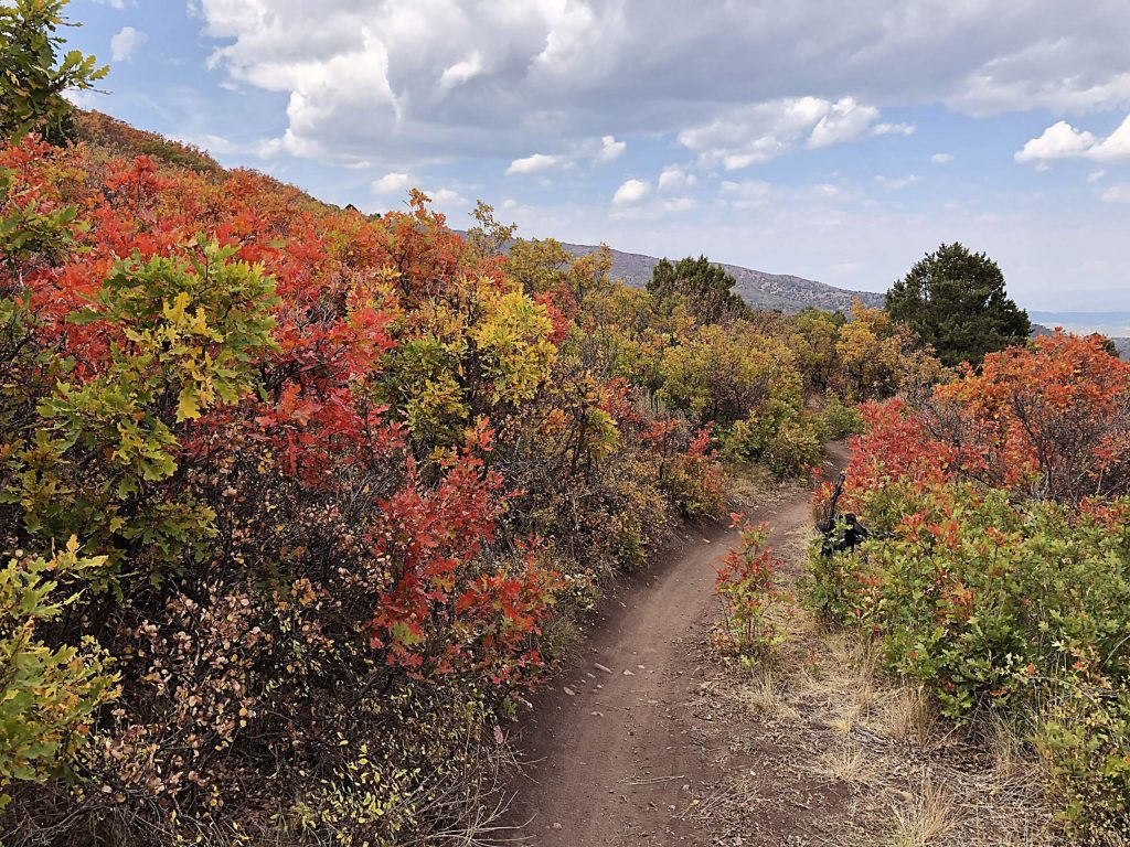 The Glassier Open Space Trail provides access to a broader trail network on the Crown. The route is a treat in fall because of the vivid colors of the oaks and other brush.